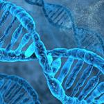 Биологические аспекты хим зависимости